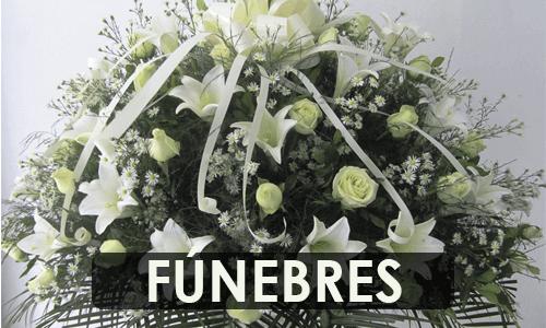 Ramos-funebres